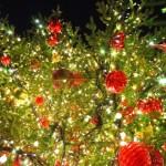 東京ディズニーリゾート2015クリスマスイベントの詳細!ランドとシーどっちにする?