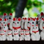 猫ひろしの本名や身長は?マラソン記録の軌跡とカンボジア国籍取得の経緯も紹介